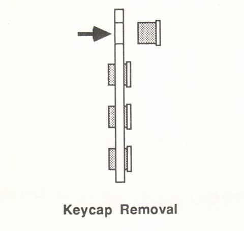 Burr Brown key remove